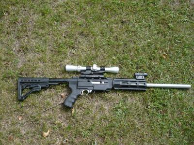 ruger 10 22 rifle stocks lookup beforebuying