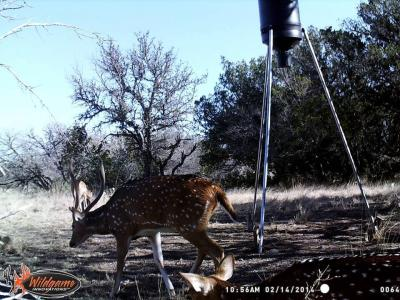 wildgame innovations camera instructions