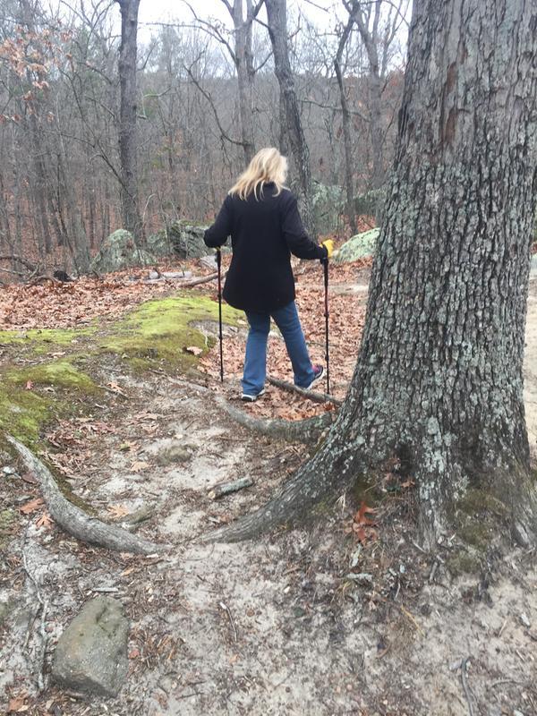 Trail Trekking Poles - Black Diamond Hiking/Trekking Gear