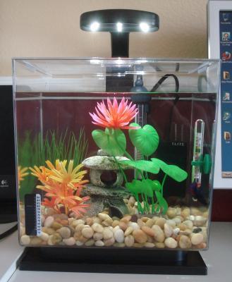 Purchase The Tetra Led Aquarium For Less At Walmart Com