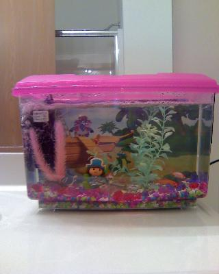 Purchase the dora the explorer pirate aquarium kit for for Walmart with live fish near me