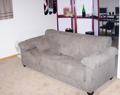 Montero Convert A Couch Sofa Sleeper Sage Teen Rooms