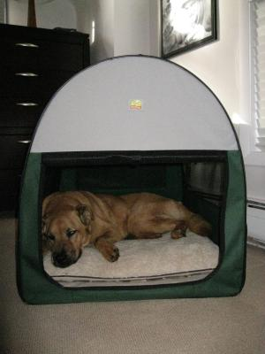 Dog House Kits Compare Prices Gopetclub Soft Sided Dog