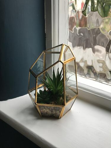 Glass Terrarium Home Garden George