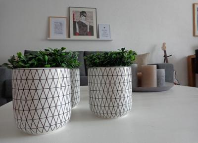Bloempot Binnen Wit.Bloempot Zwart Wit Studio Kop En Schotel
