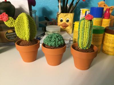 Bolcom Haakpakket Cactus Set 3 Stuks Hardicraft Speelgoed