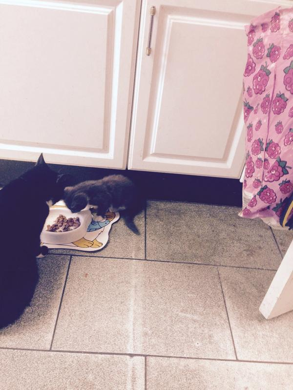 Both love their food