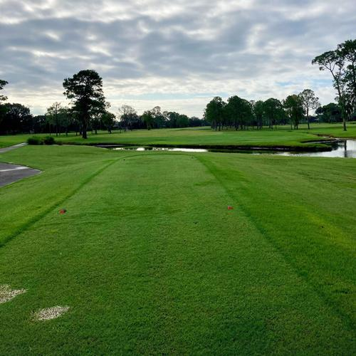 1st tee box -  from the white tees