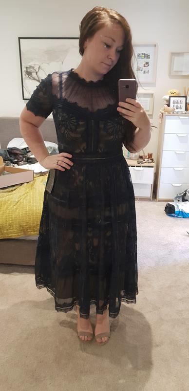 fe1e9b7213125 Camilla Tea-Length Dress by Tadashi Shoji for Hire