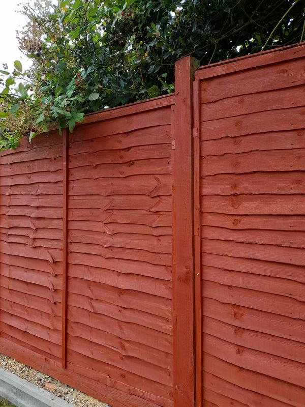 Ronseal One Coat Fence Life Red Cedar Matt Fence Shed Wood Treatment 12l Departments Diy At B Q