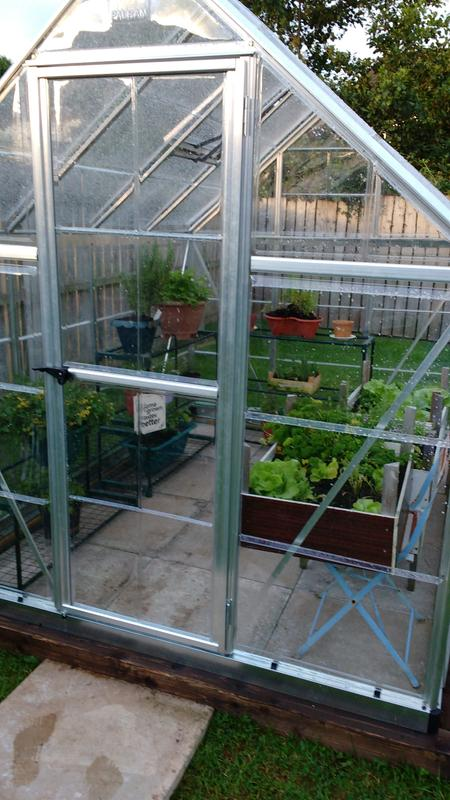 Palram Harmony 6x8 Polycarbonate greenhouse | Departments | DIY at B&Q