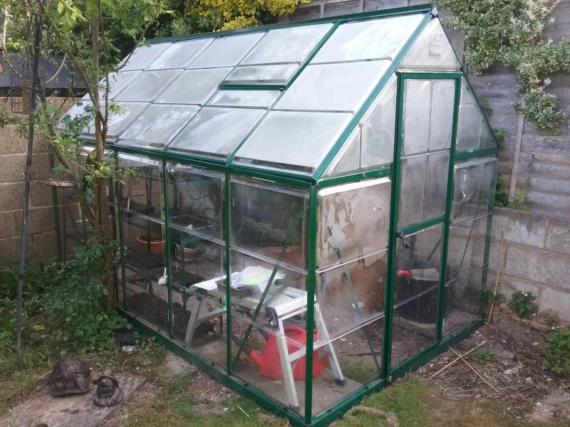 Palram Harmony 6x10 Polycarbonate greenhouse | Departments | DIY at B&Q