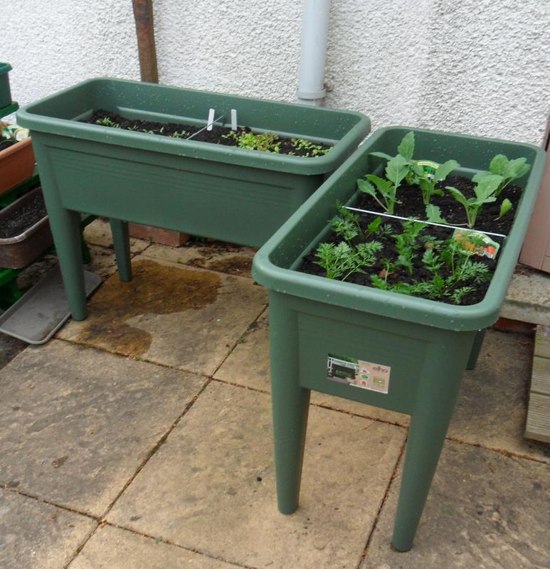 Elho Green Basics Leaf Green Grow table (H)651mm (L)750mm | Departments |  DIY at B&Q