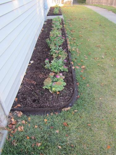Vigoro Ecoborder 4 Ft Brown Rubber Landscape Edging 6
