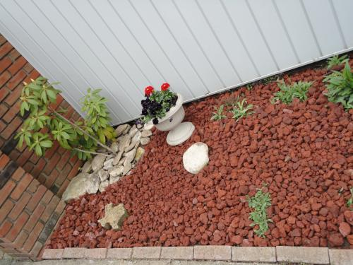 Decorative Stone For Gardens Vigoro 05 cu ft decorative stone red lava rock 440897 at the home decorative stone red lava rock 440897 at the home depot mobile workwithnaturefo