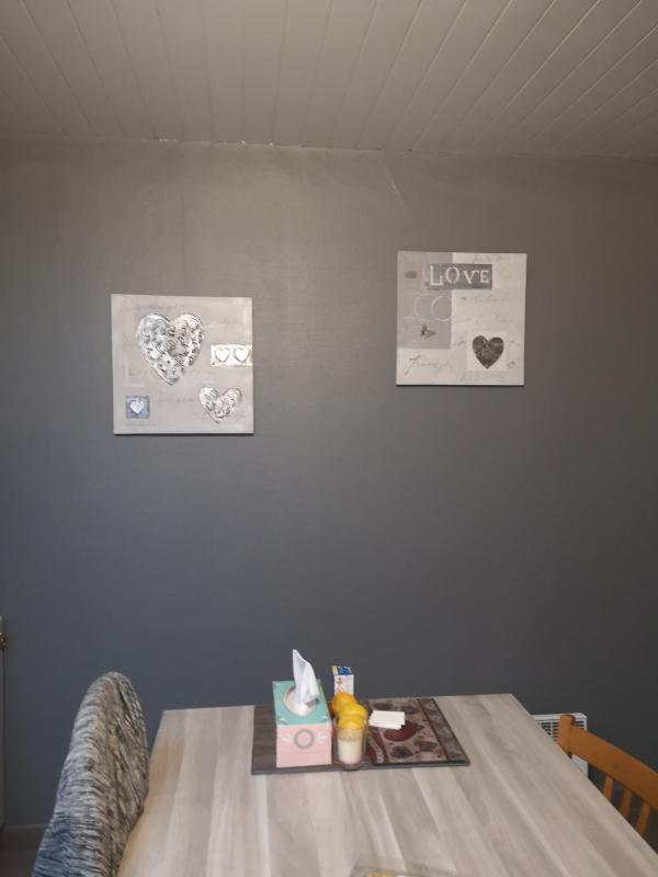 Kit D Outils à Peinture Paint Runner Pro