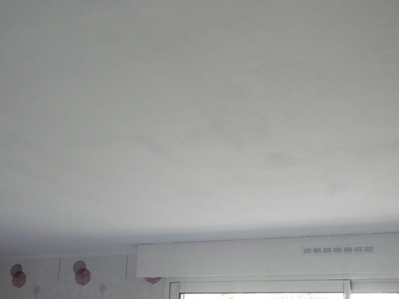Peinture Blanche Mur Plafond Et Boiserie Pro Tech Dulux Valentine
