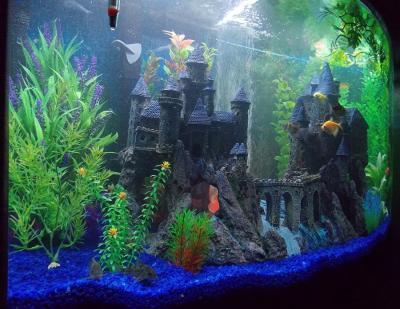 giant castle aquarium decoration 1000 ideas