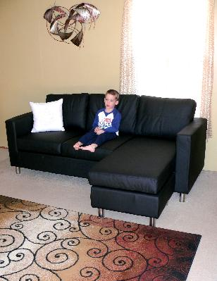 Small Spaces Microfiber Sectional