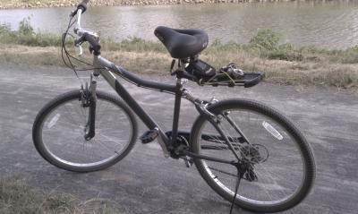 Next Avalon 26 Men S Cruiser Bike