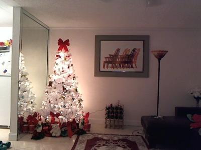 holiday time unlit 65 jackson spruce artificial christmas tree white walmartcom - White Christmas Trees At Walmart