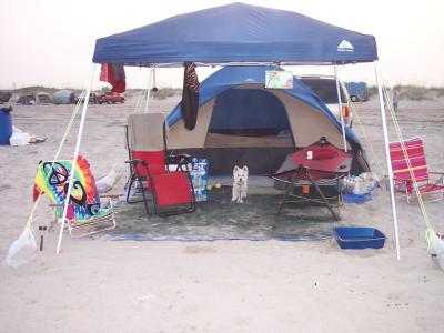 & Ozark Trail 9u0027 x 9u0027 Express Canopy - Walmart.com