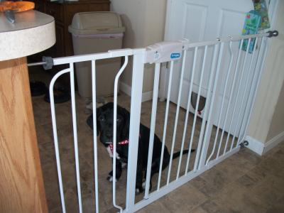 baby safety gates stairs